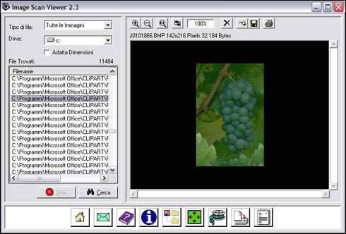 Image Scan Viewer